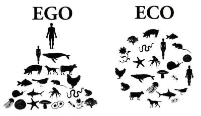 eco vs ego