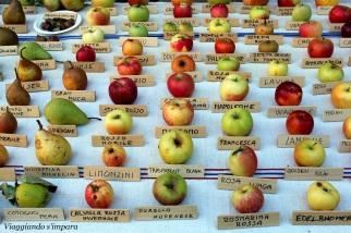 tipi di mele